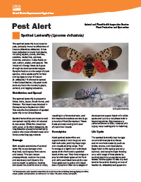 USDA-APHIS Spotted Lanternfly Pest Alert